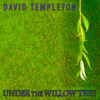 Under the Willow Tree Cover